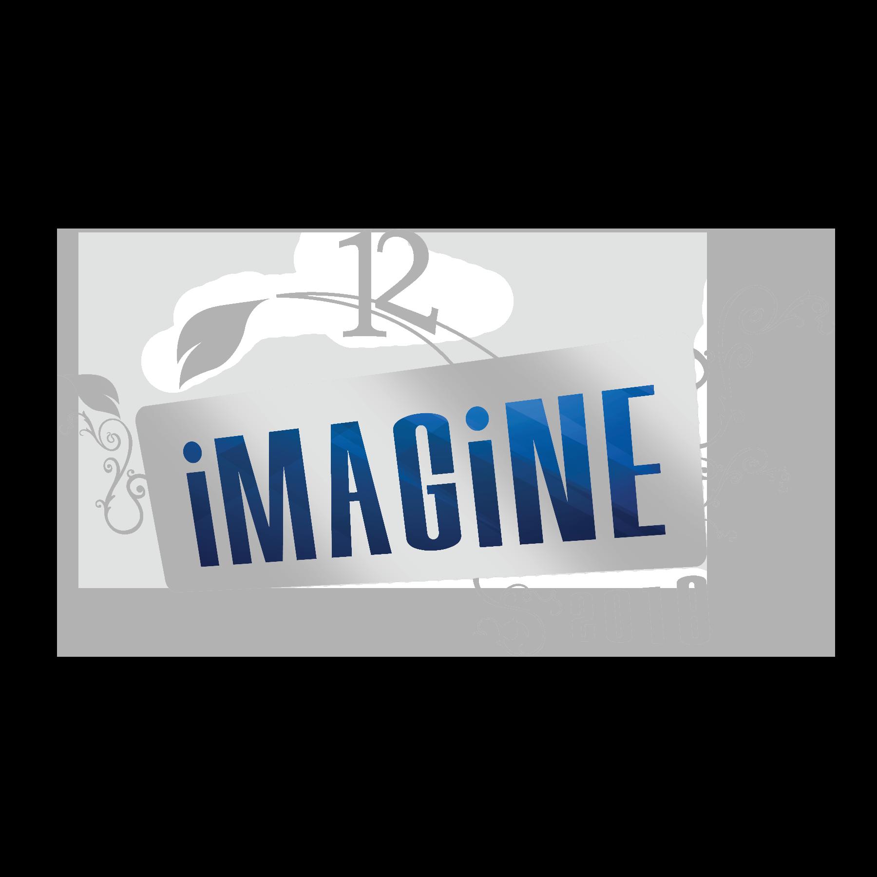 Imagine Logo_Silver